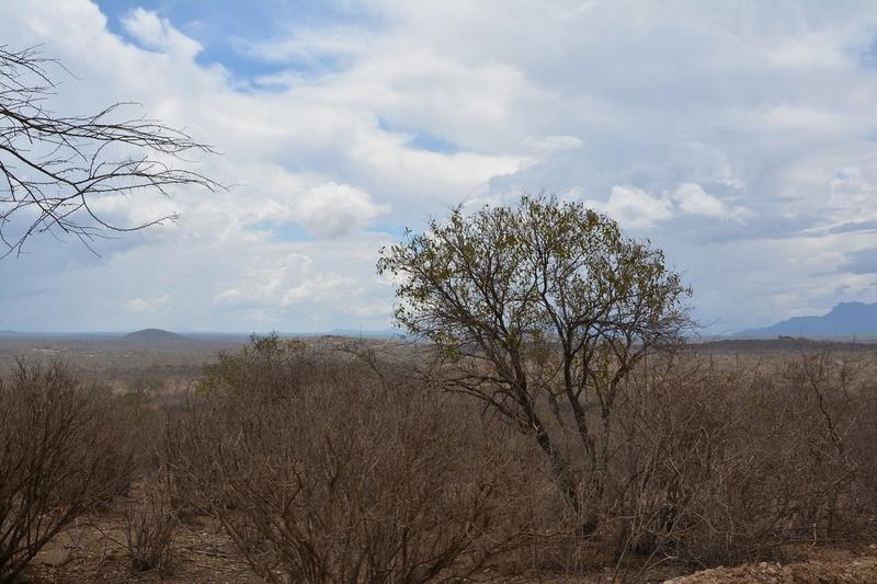 photos du kenya  Dsc_0223