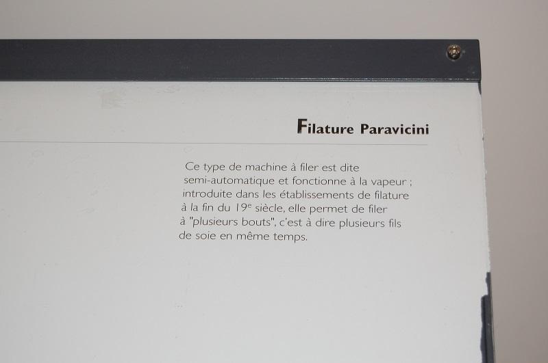 tallignan  Dsc_0281