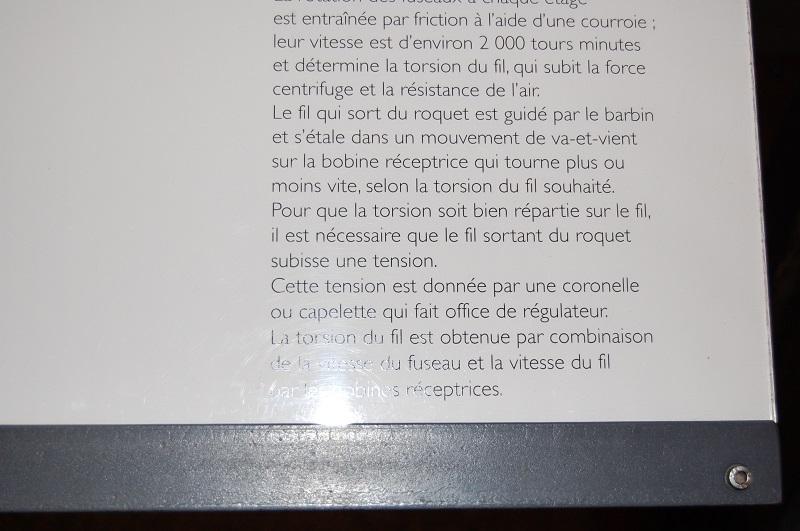 tallignan  Dsc_0324