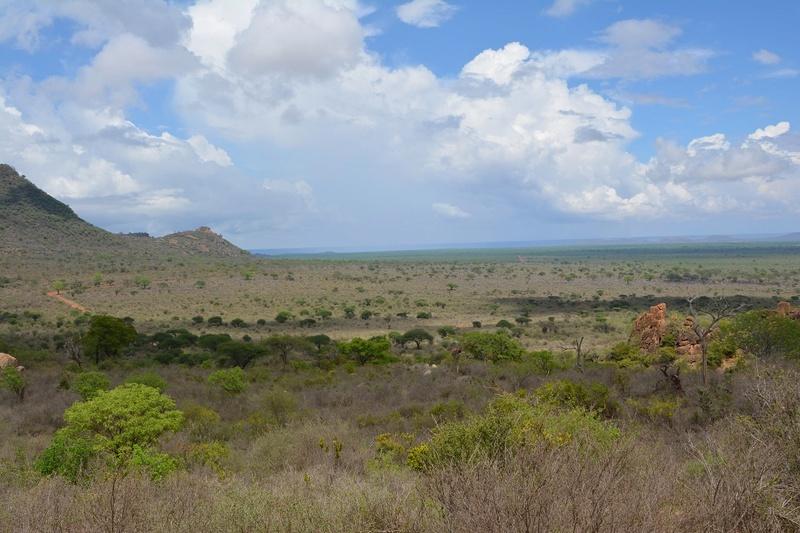 photos du kenya  Dsc_0495