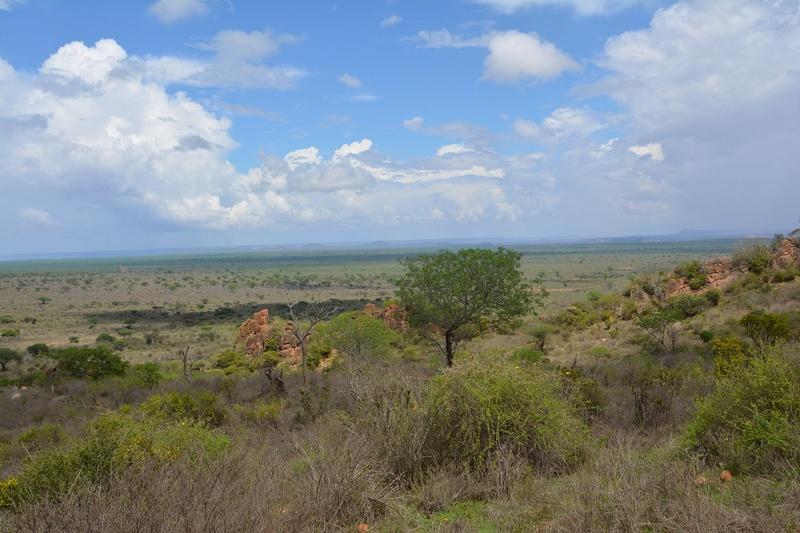 photos du kenya  Dsc_0502
