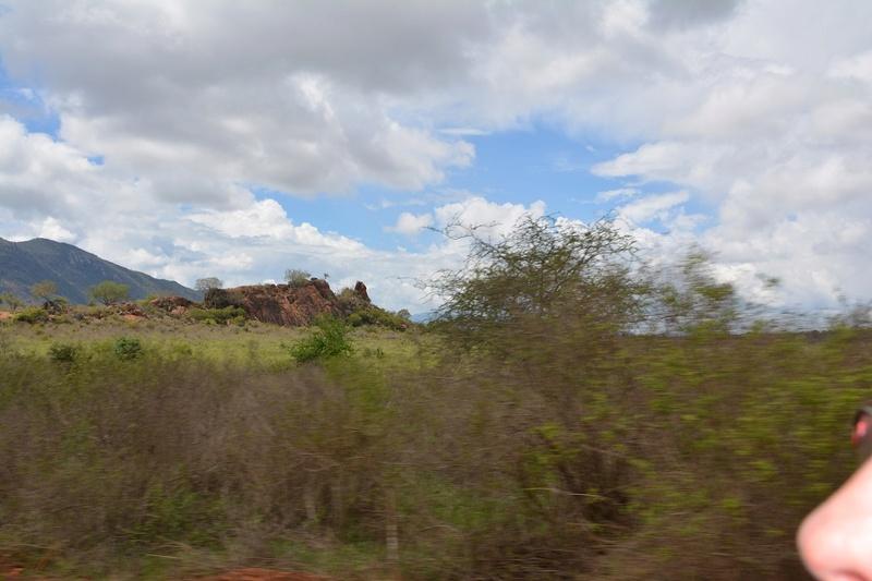 photos du kenya  Dsc_0503