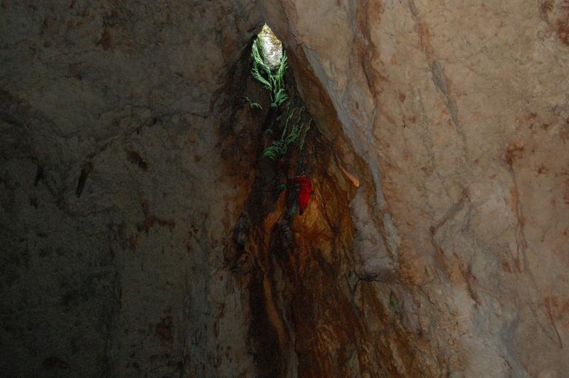 grotte de l'aven d'orgnac Dsc_0513