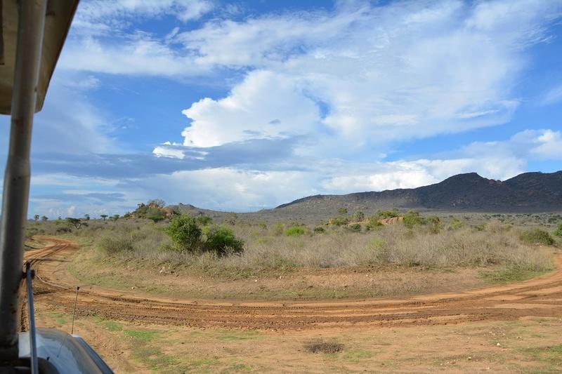 photos du kenya  Dsc_0636