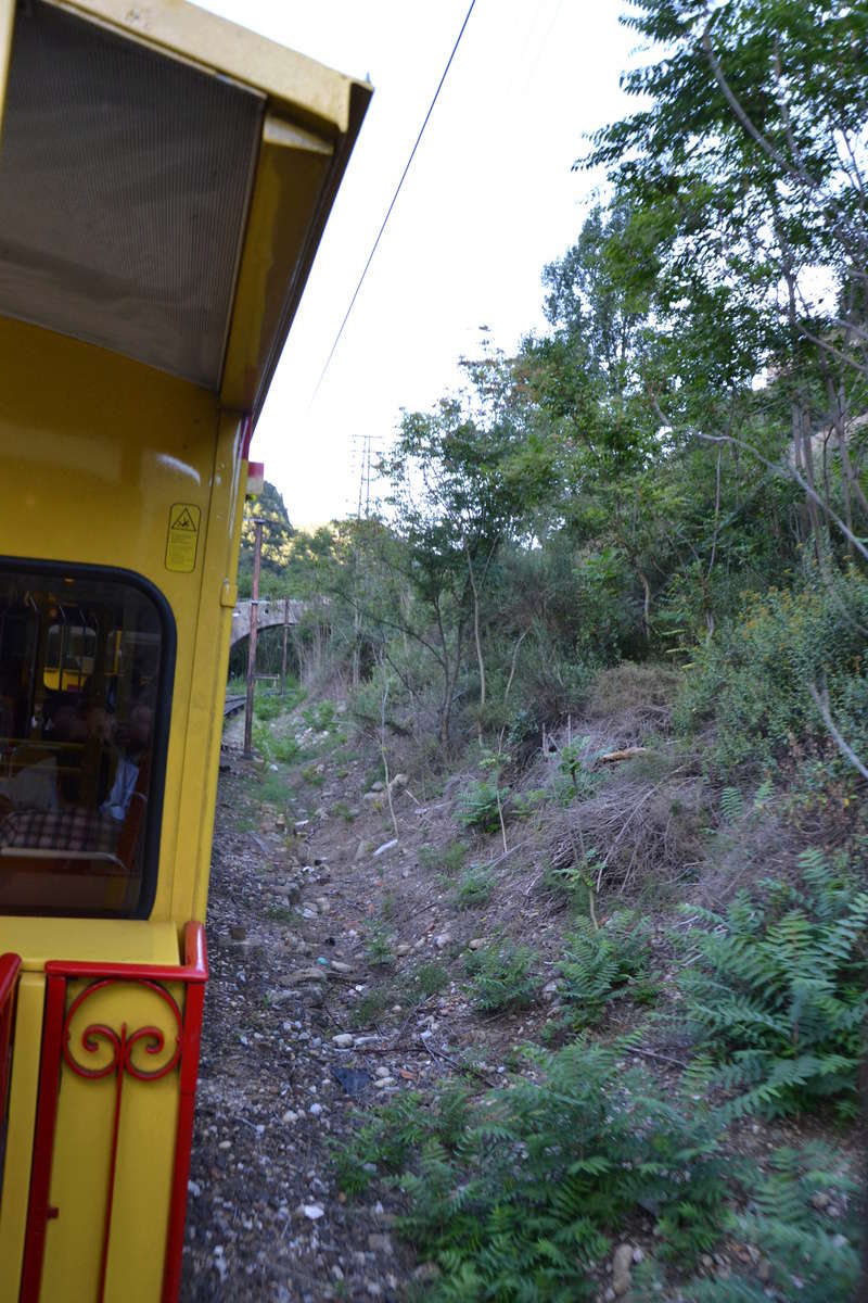 le petit train jaune  Dsc_1045
