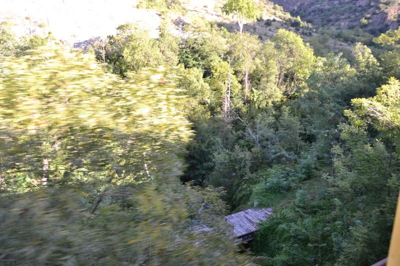 le petit train jaune  Dsc_1087