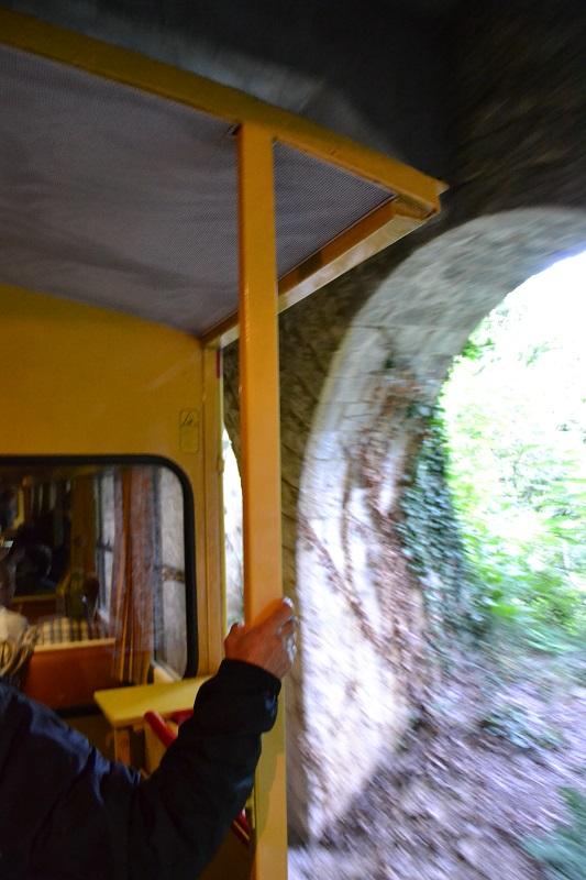 le petit train jaune  Dsc_1389