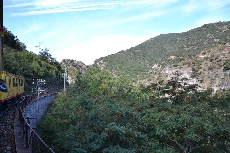le petit train jaune  Dsc_1498
