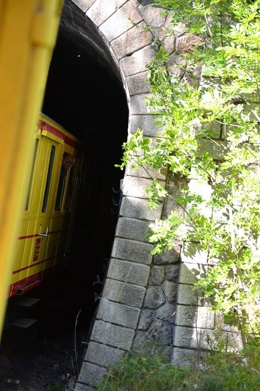 le petit train jaune  Dsc_1604