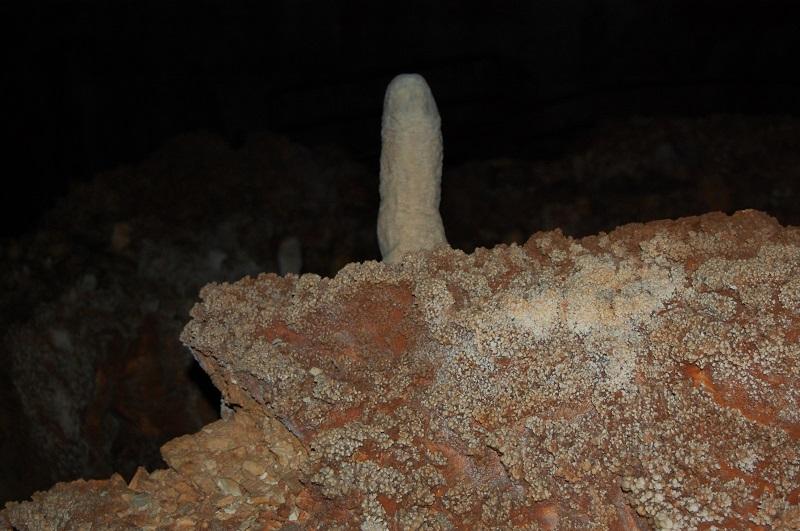 la grotte de la forestiere Dsc_2013