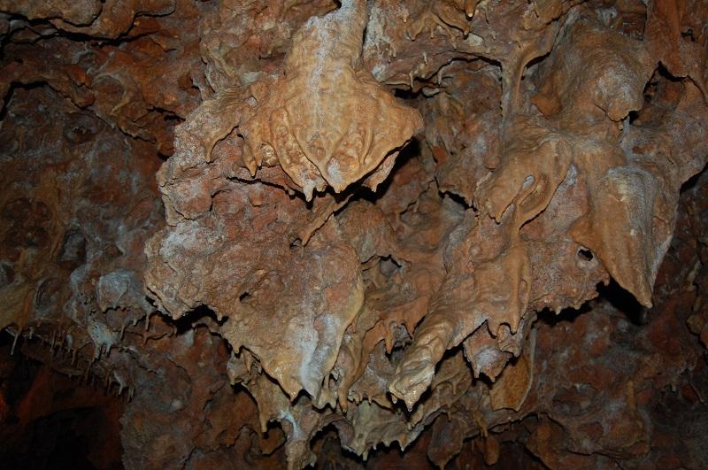 la grotte de la forestiere Dsc_2014