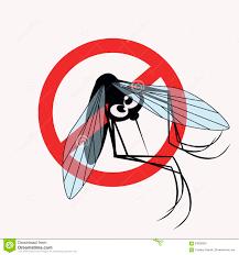 Vous faites comment contre les moustiques? Mousiq10