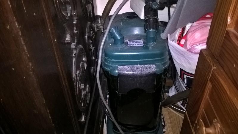 Reparação filtro externo canister Wp_20110