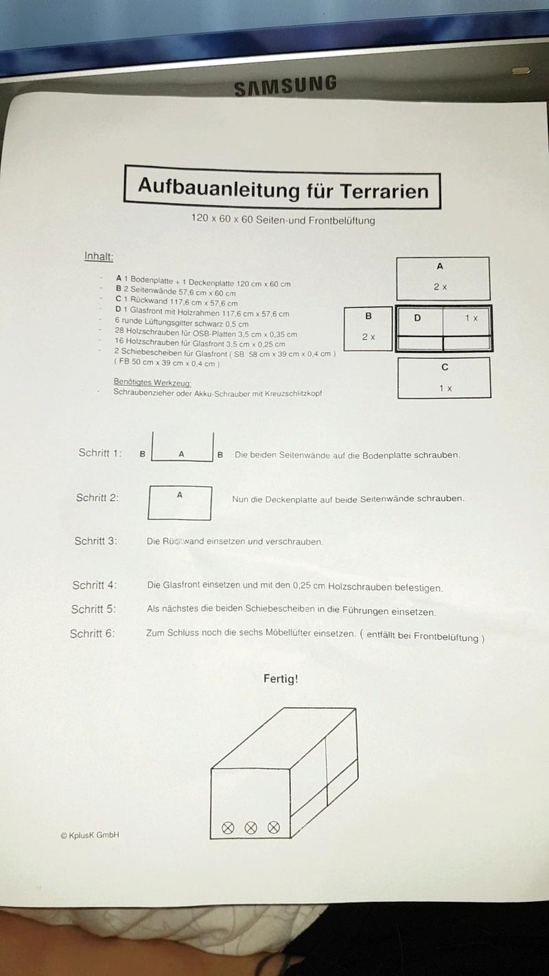 Terrarium des p'tits  - Page 2 Snapch21