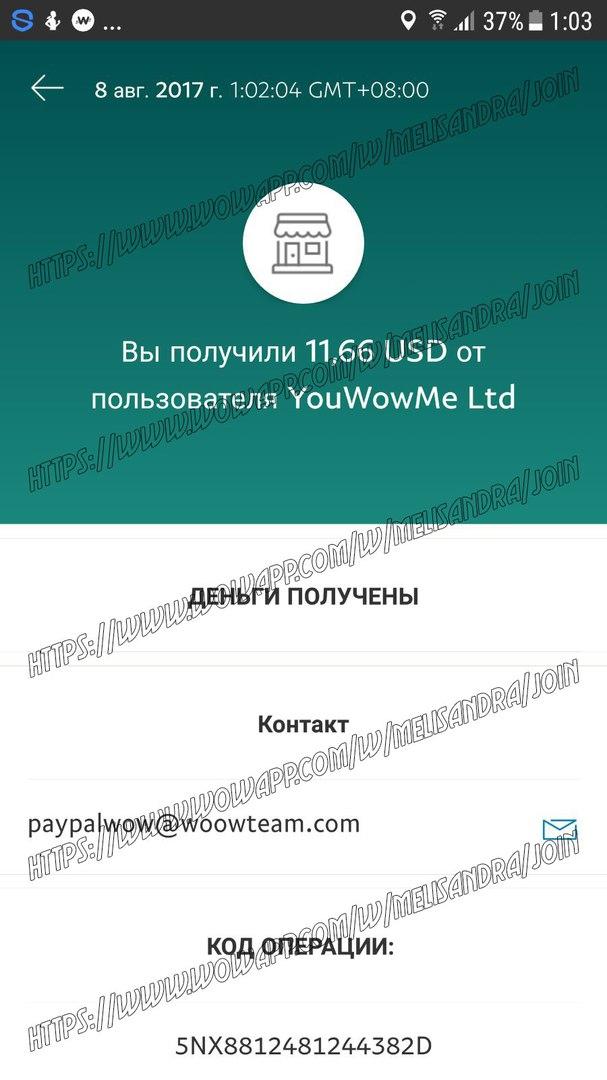 Wowapp супер приложение для общения и заработка Nvtoes11