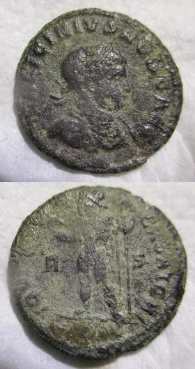 Nummus ? Img_1810