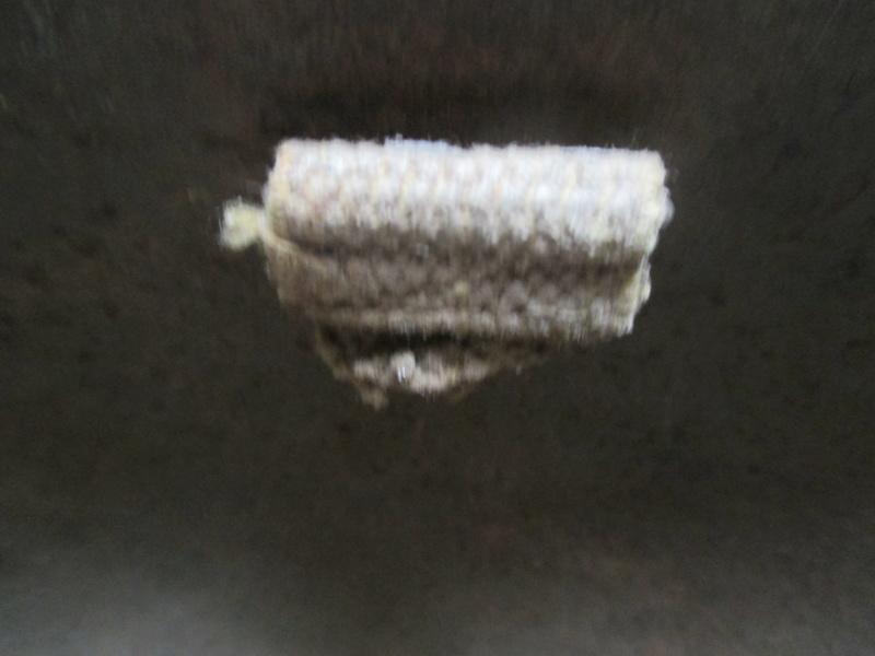 Coque de casque à identifier Img_0638