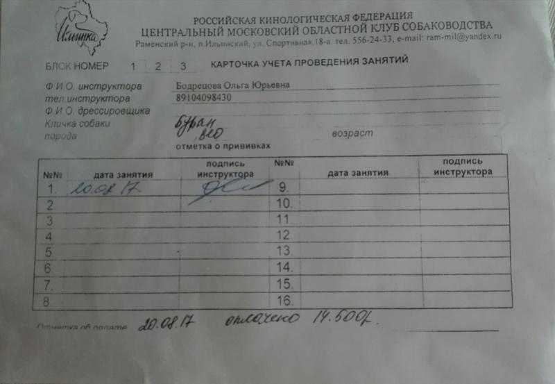 ВОСТОЧНО-ЕВРОПЕЙСКАЯ ОВЧАРКА ВЕОЛАР ИРБИС Img_2022