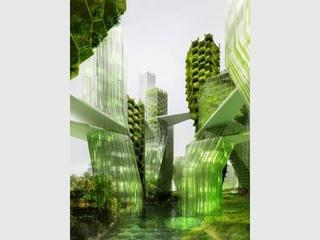 Biomimétique : quand la nature redessine les villes de demain Bio310