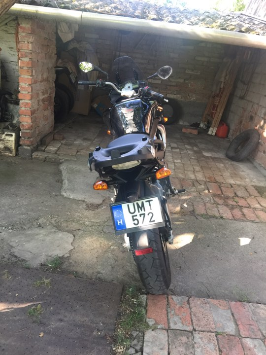 New motorcycle and license! 20068310