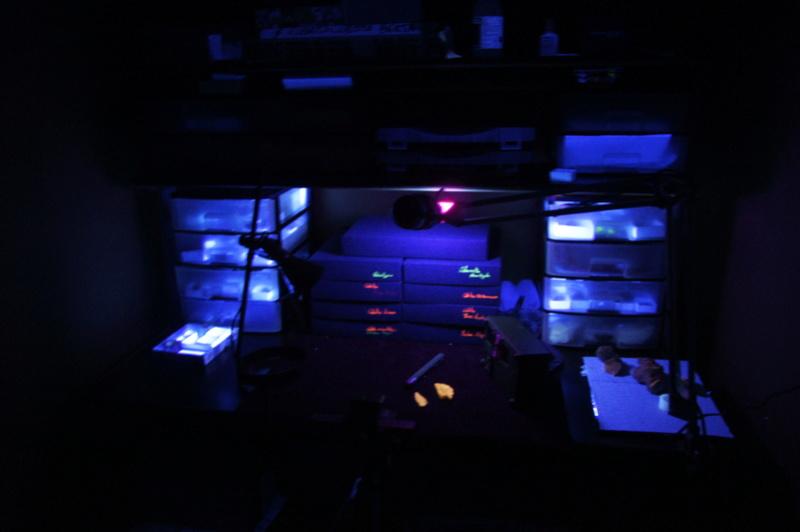 Fotos de minerales fluorescentes _dsc8611
