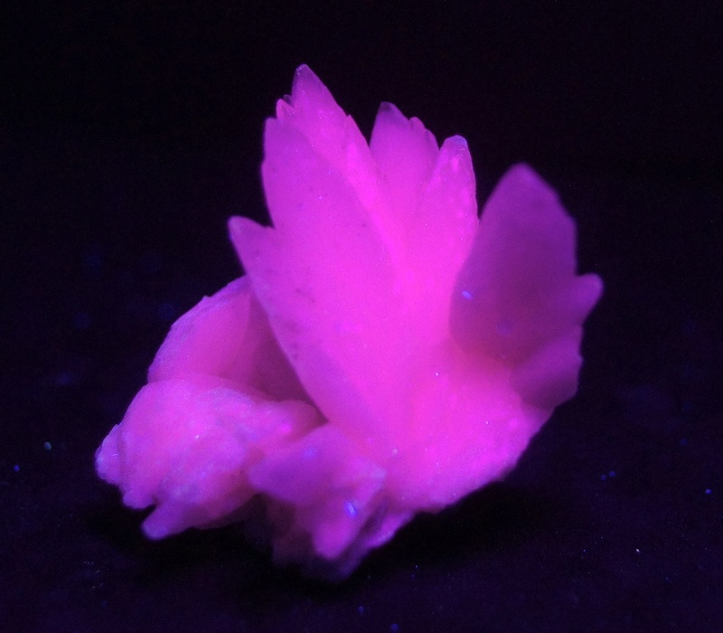 Colección de Minerales Fluorescentes - Página 4 Fullsi45