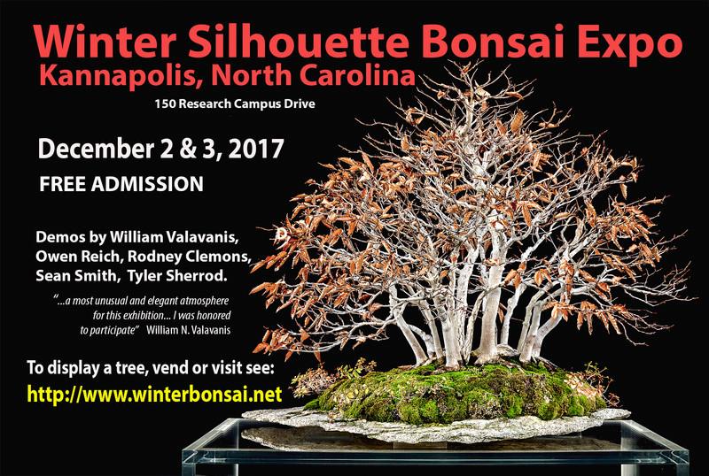 Winter Silhouette Bonsai Show December 2017 in North Carolina Winter10