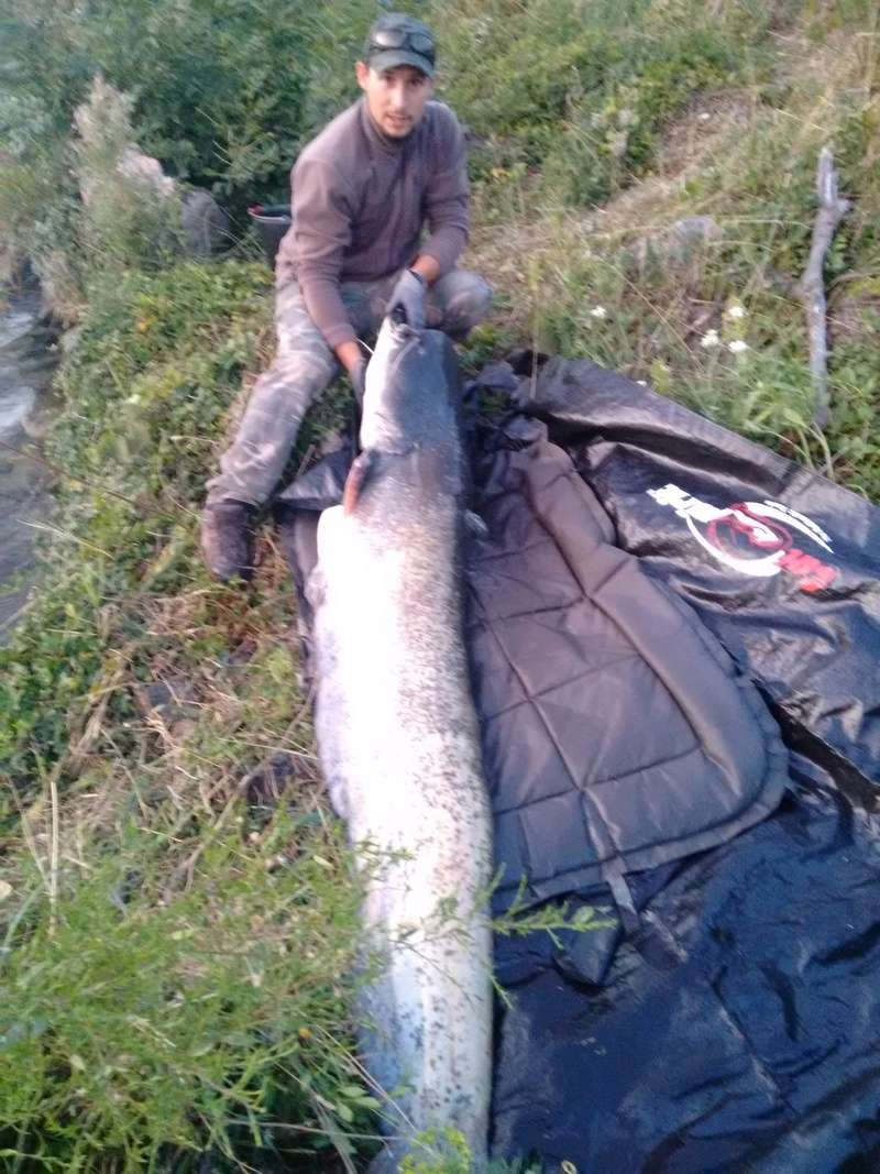 Sortie pêche aux appâts. Img_2014