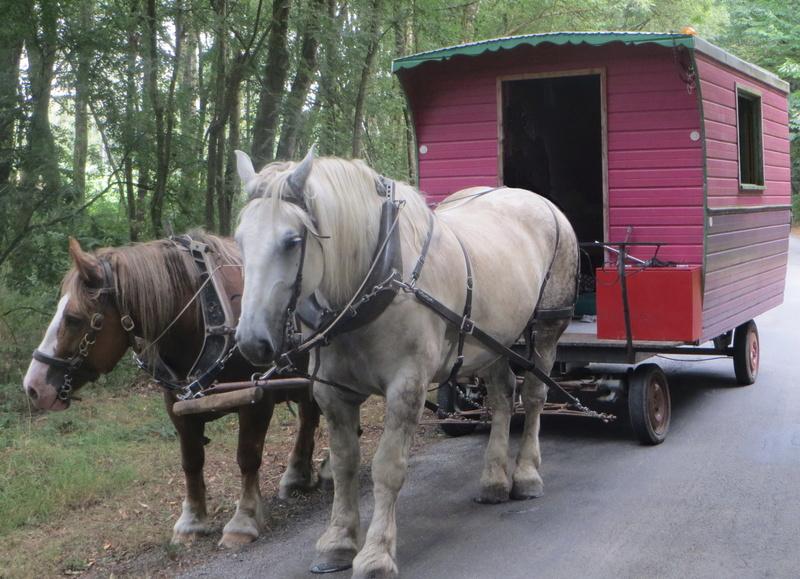 ROULOPA, projet de vie en roulottes + gite nomade Img_2610