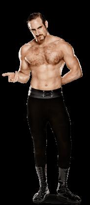 Roster de SmackDown!! Aidene11