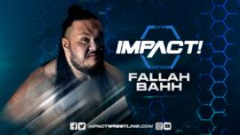 Roster Impact Wrestling! Fallah10