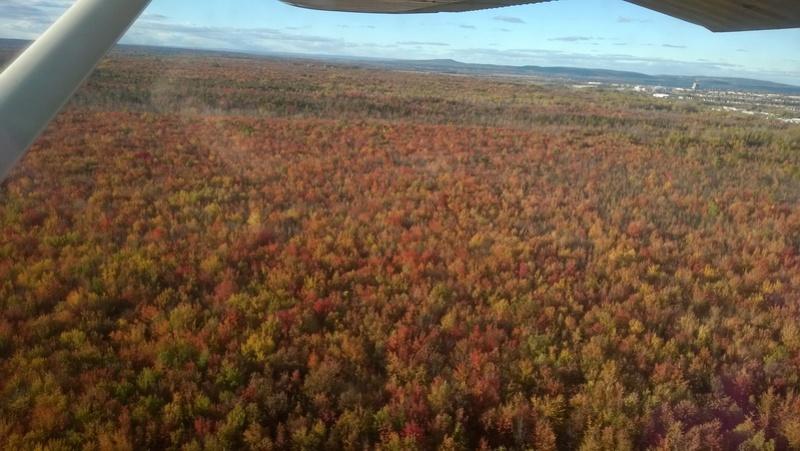 QQ photos de vol au Canada  Wp_20129