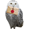 1. Hogwarts-Briefe für Jungzauberer Hedwig10