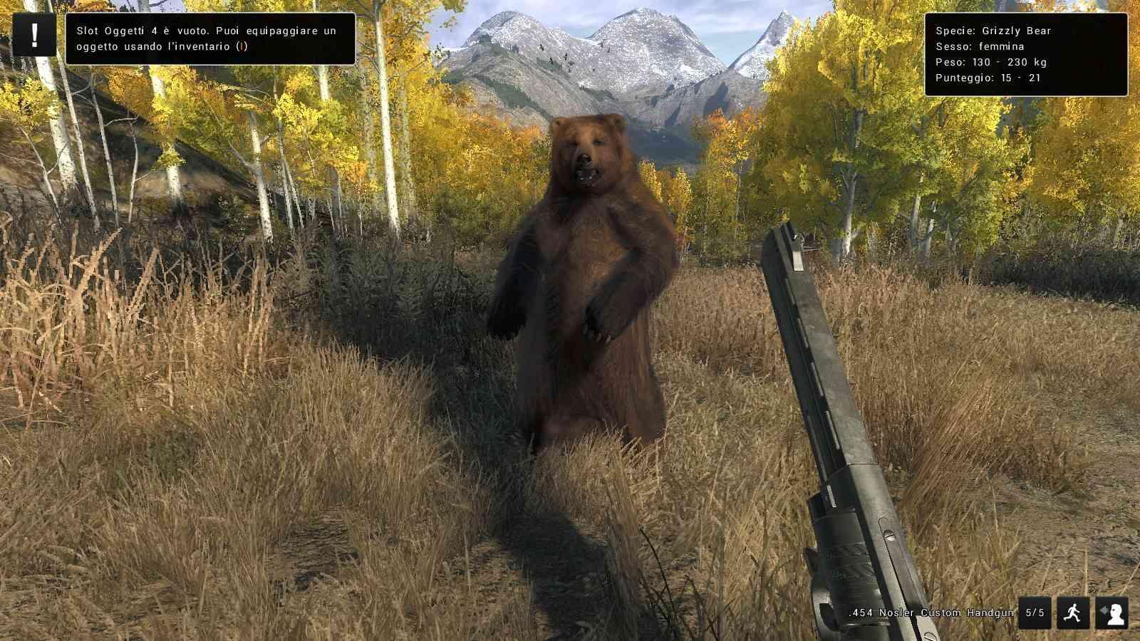 Grizzly Bear Attacchi e animazioni 20170811