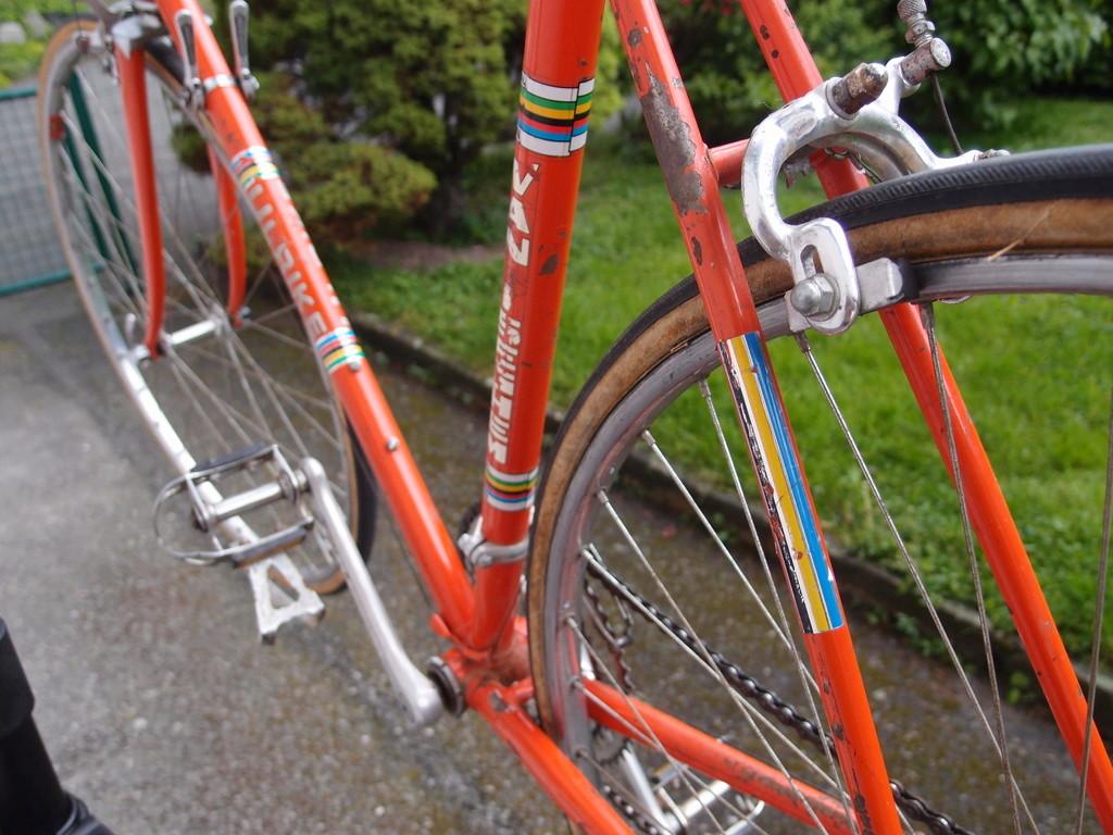 Vélo course Ulrike P5130912