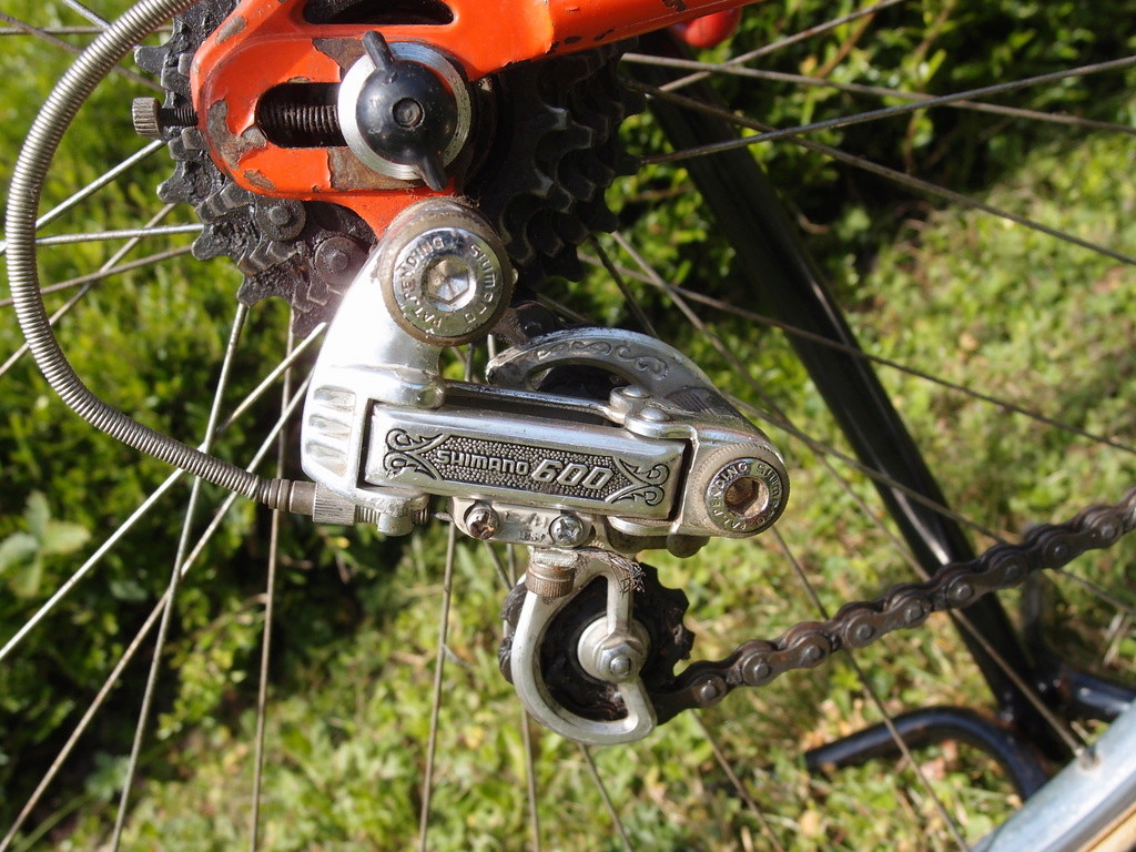 Vélo course Ulrike P7071011
