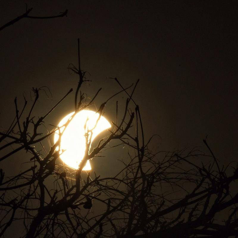 Eclipse Solar Parcial - Fortaleza - 21/08/17 Whatsa16