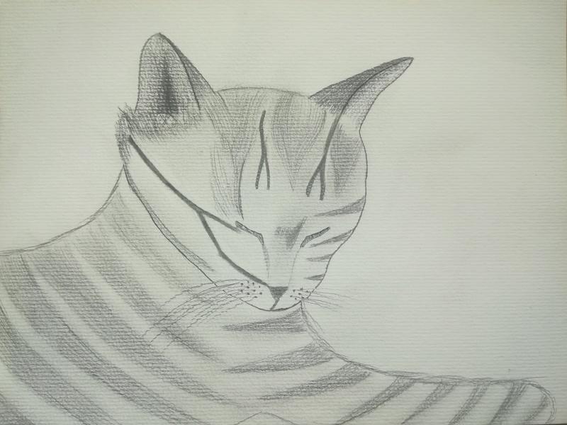 """Meine """"Zeichnungen"""" Img_2011"""