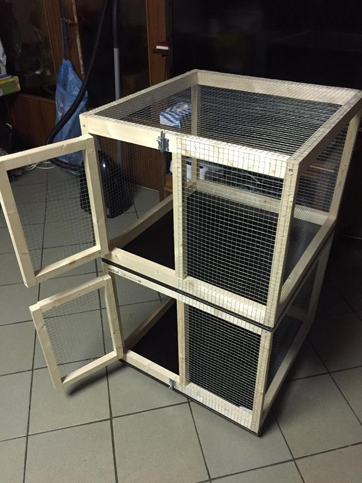 Cage faites maisons ! 21469610