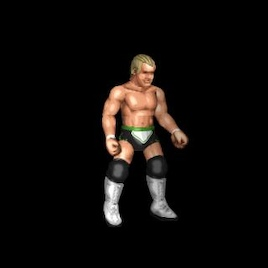 FIRE PRO WORLD LEAGUE ROSTERS - Page 4 Img_7511