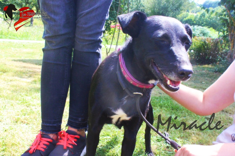 Miracle ADOPTEE Miracl11