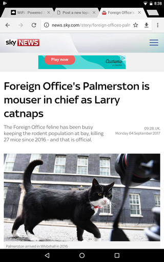 Cat fight: Downing Street's top mouser revealed Screen21