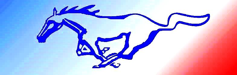National Mustang 2019