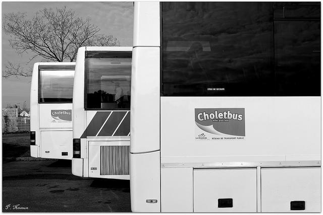 [Réseau] CHOLETBUS T.P.C  35957110