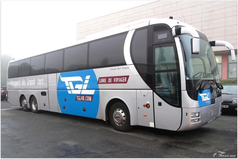 MAN Lion's Coach  Transp12