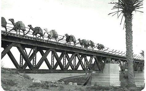 جسر بربوتي يقع في الجانب الغربي من محافظة المثنى _ua_ai10