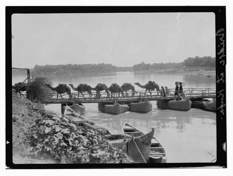 تراثية نادرة لمدينة الكوفة تعود قطعان الإبل تعبرعلى جسر الكوفة على نهر الفرات A_uo_o10