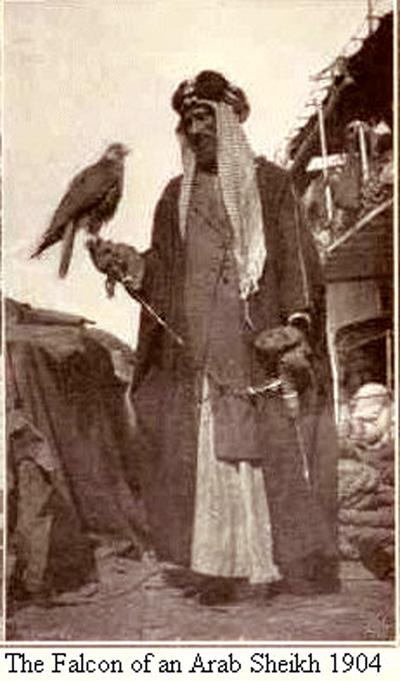 رجل يحمل صقر عربي عام 1904م O_aoo_10