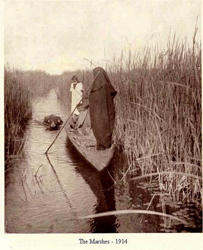 أهوار العراق عام 1914م Uu_oi_10