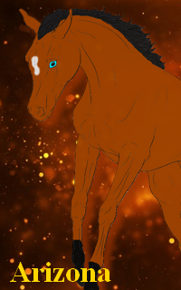 Element's Horses ¤ RPG Équin Fantastique Avbell10